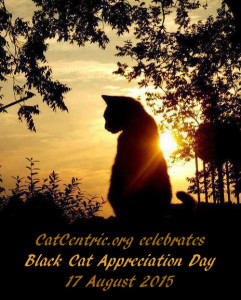 Black Cat Appreciation Day, 2015