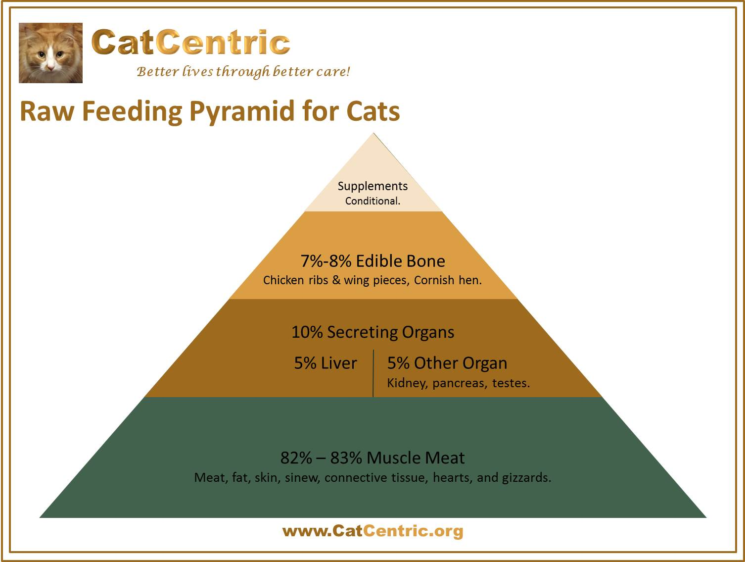 Raw Feeding Pyramid