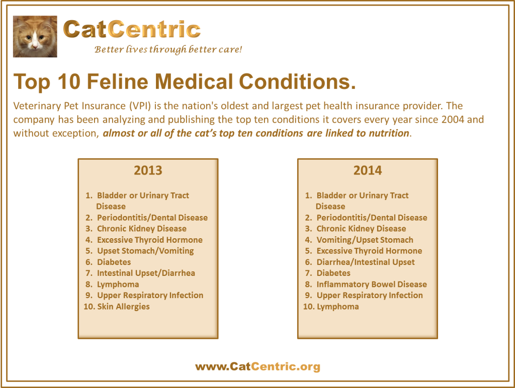 VPI Top 10 Feline Medical Conditions