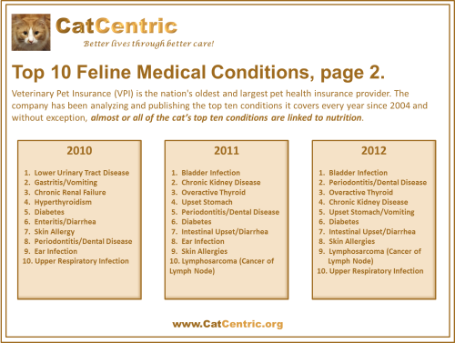 VPI Top 10 Feline Medical Conditions, page 2
