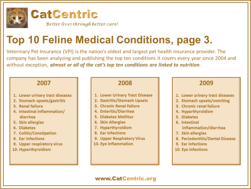 VPI Top 10 Feline Medical Conditions, page 3